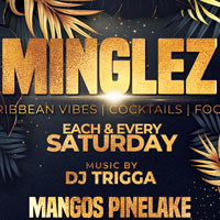 MINGLEZ ... CARIBBEAN PARTY